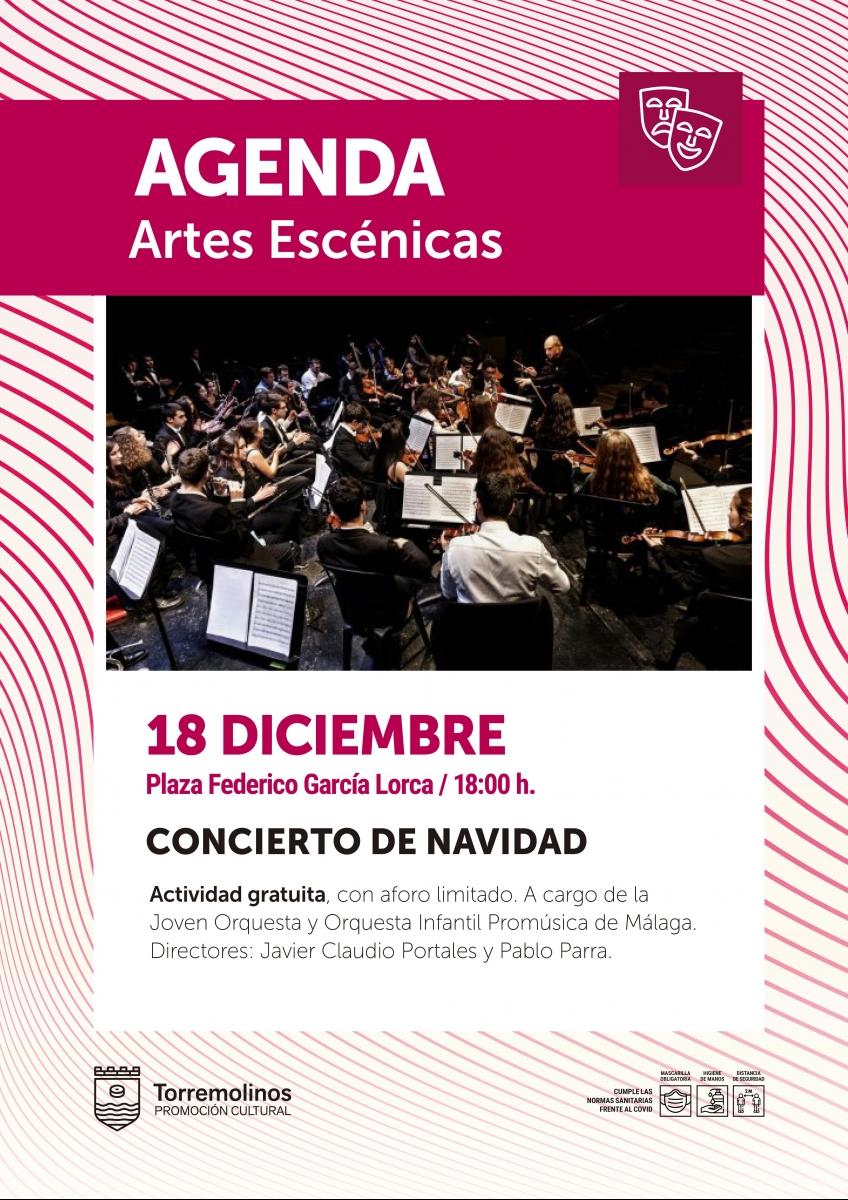 20210107135133_happened_24_concierto-navidad.jpg